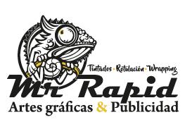 Tintado de Lunas Palma - Mr. Rapid